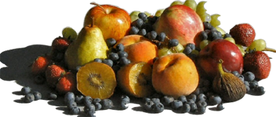 Mixed Fruit Photo